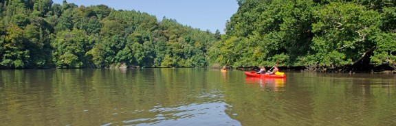 Kayaking on the River Dart in Devon